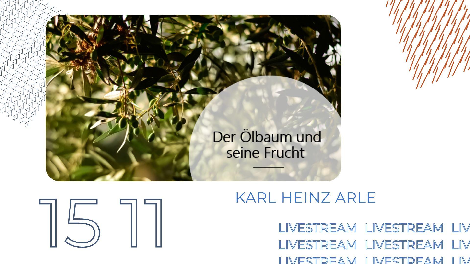 Amech Ami – Die Frucht des Ölbaums